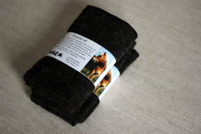 Leg pad for horses